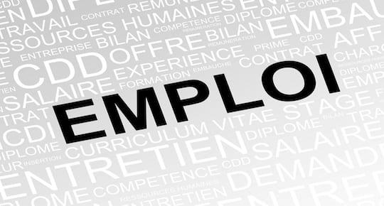 Emploi et Job gestionnaire de campagne Google ADS